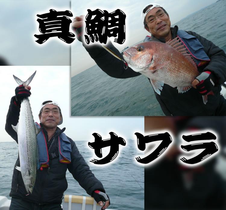 真鯛とワラサ